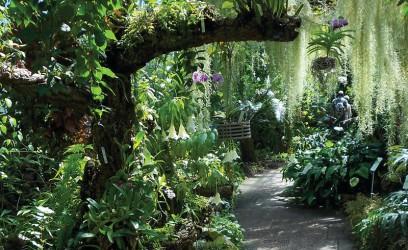 Royal Botanic Garden Edinburgh & Glasshouses